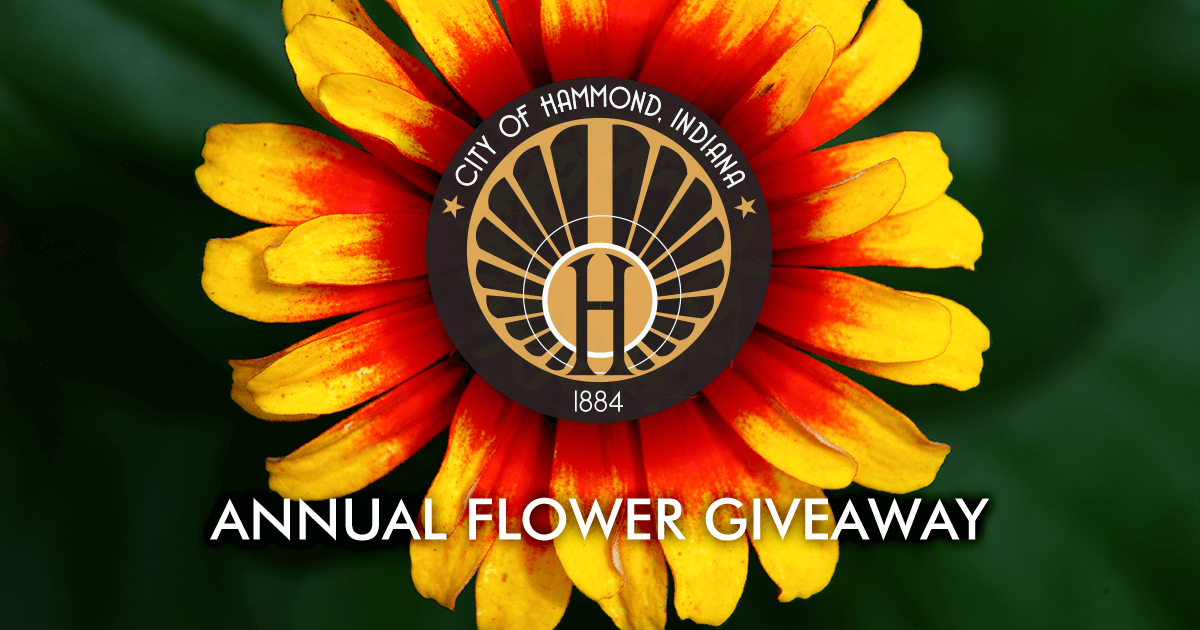 """Featured image for """"Hammond's 2021 Flower Giveaway"""""""